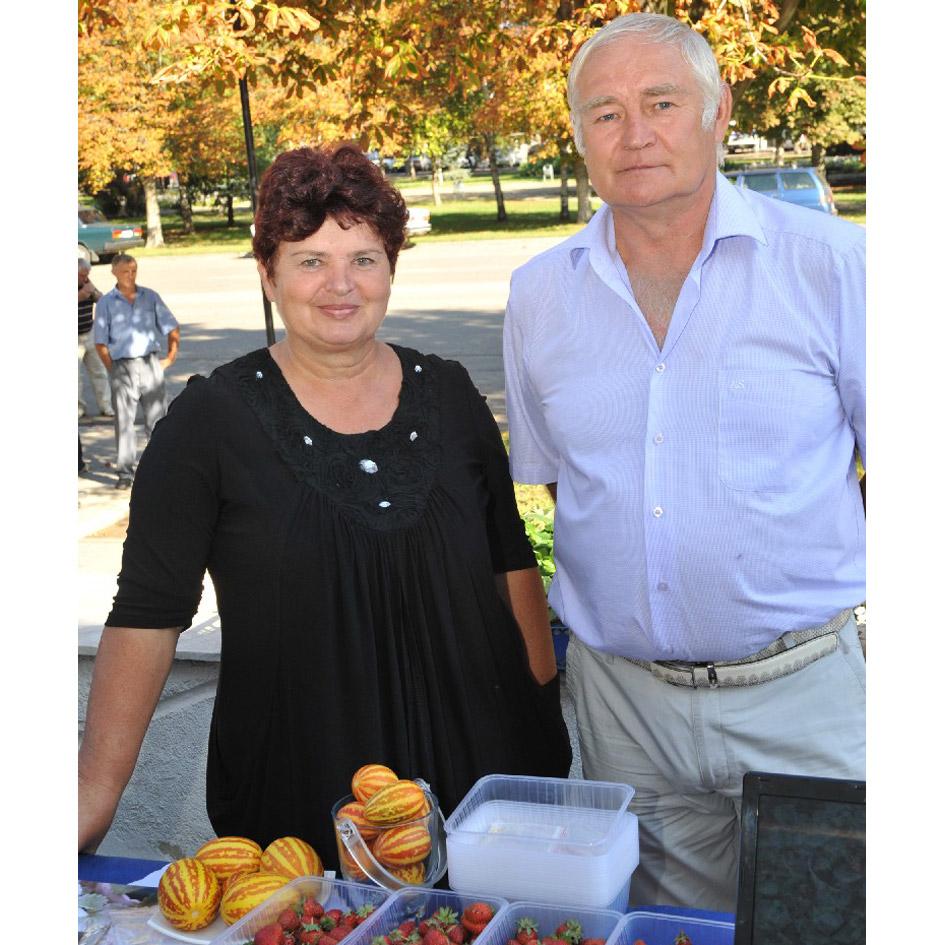 Супруги Кодаковы из Новопластуновской специализируются на  выращивании клубники