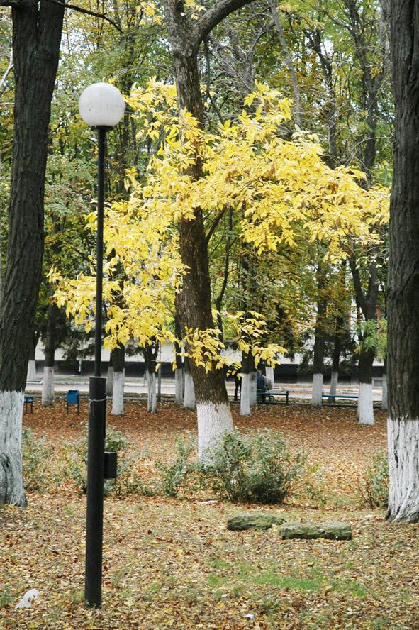 Осень. Павловский парк.
