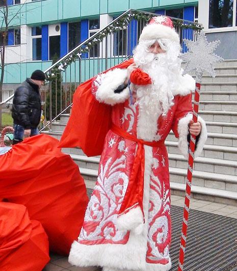 К Новому году на Кубань слетятся 35 тысяч снегирей