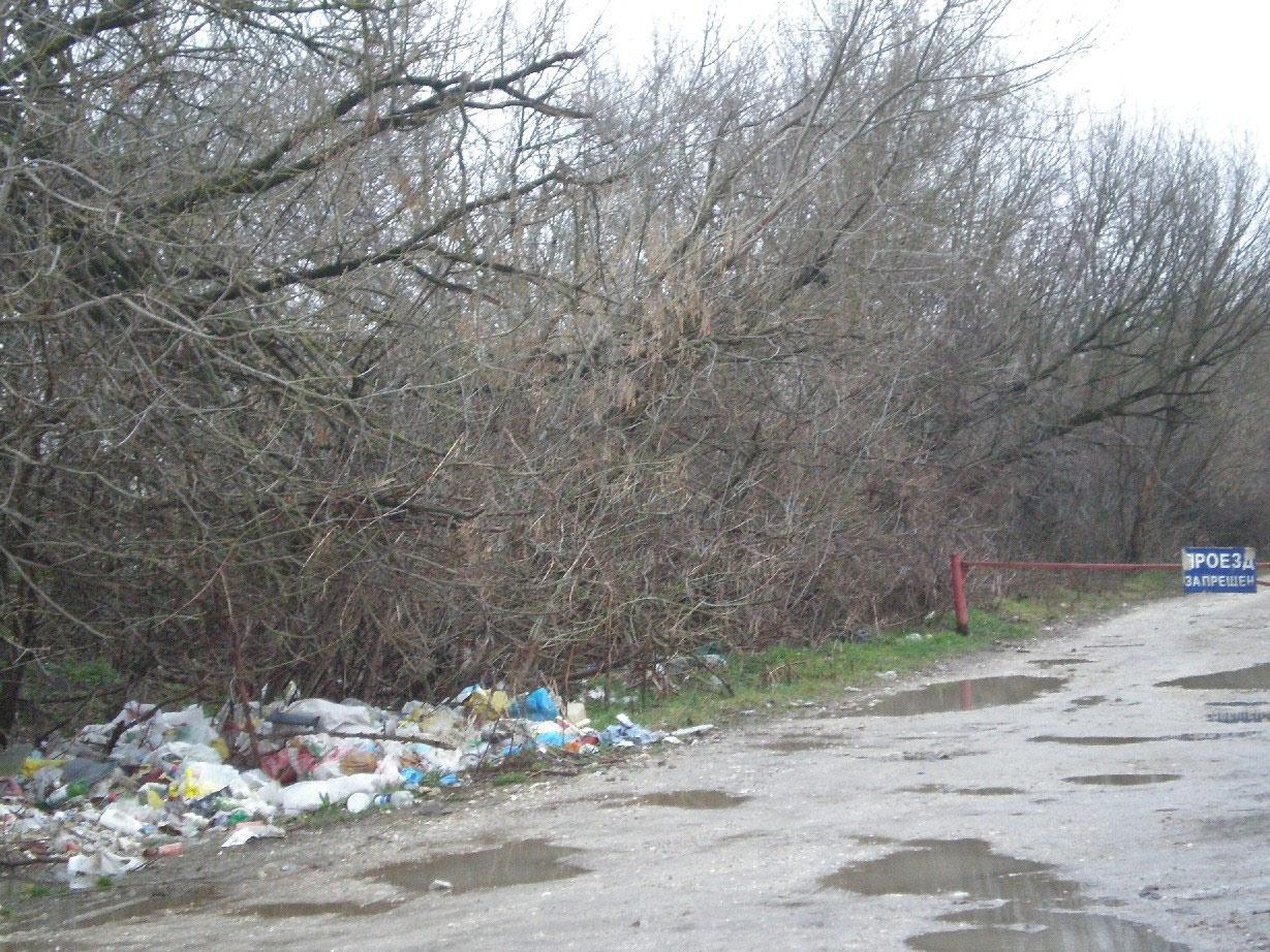 Объездная дорога в Павловской: далеко ехать не надо, если свалка прямо на дороге