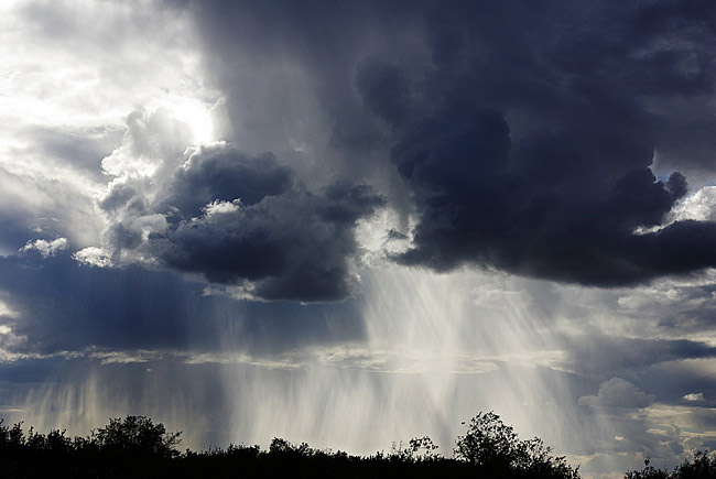 И жара, и дожди