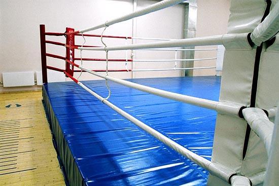 Проверка на ринге