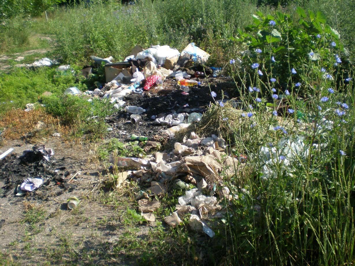 мусор, Павловская