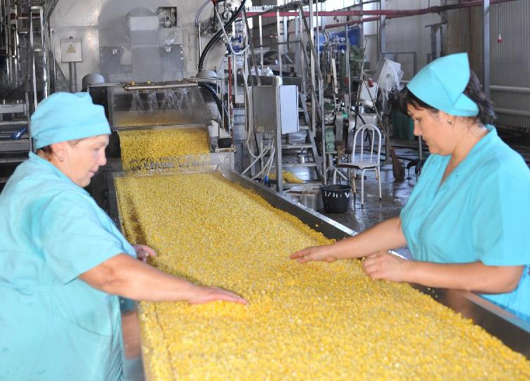 На линии сладкой кукурузы оператор бланширования Таиса Ивановна БЕДАЧЕНКОВА (слева)  и варщик заливки Эльмира Адиковна РЫВИНСКАЯ.