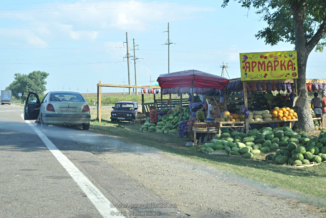 Такие ярмарки на автодороге «Дон» можно встретить едва ли не на каждом километре