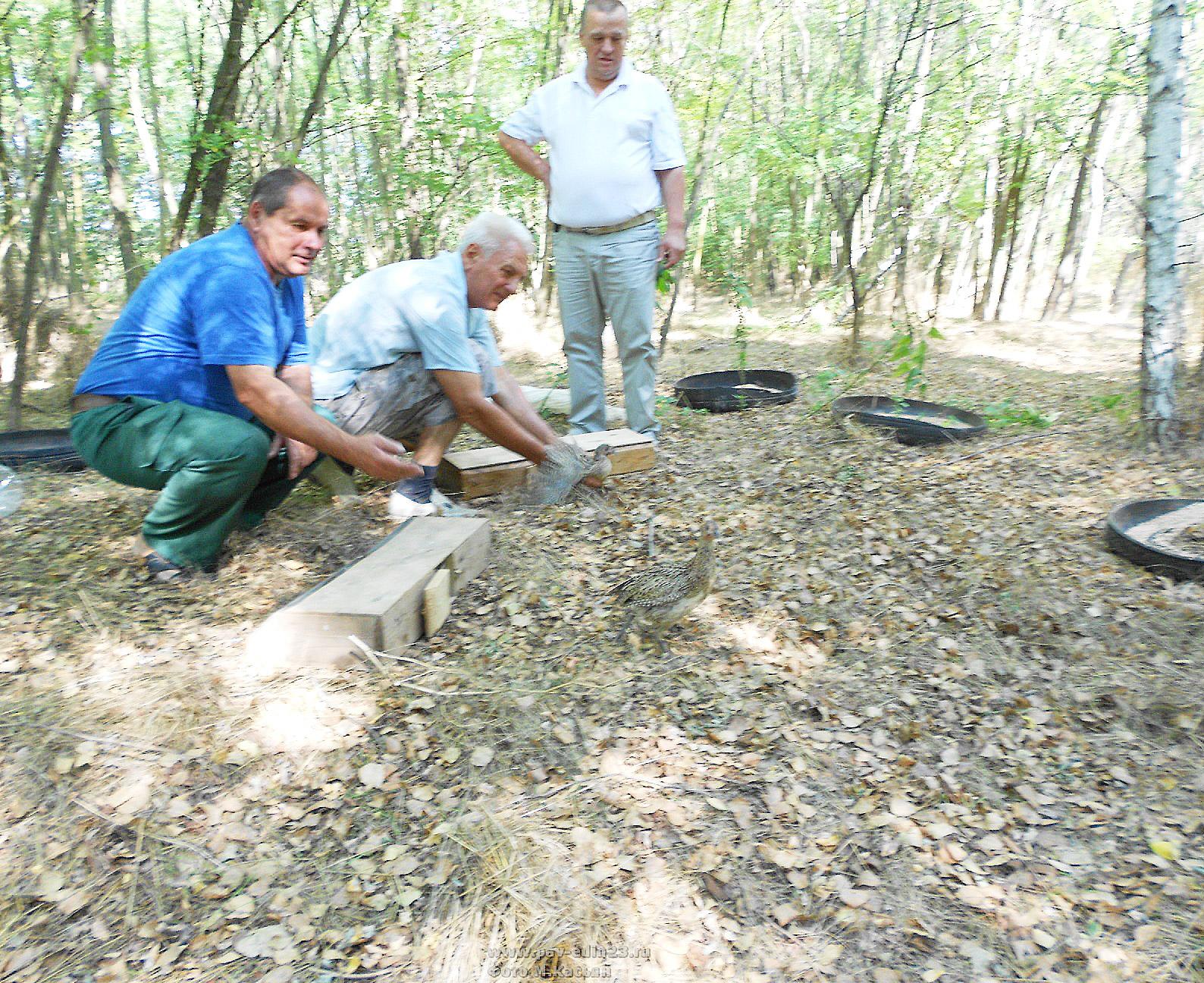 На снимке (слева направо): егерь А.В. СЕМЕНЮК, охотник А.В. САДЬКО и председатель РОООР Ю.Е. ДЗЮБА выпускают птиц.