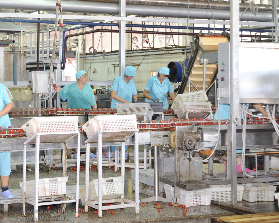 Линия по переработке помидоров в ООО «Техада»