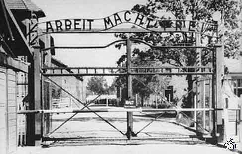 27 января – особая дата для старшего поколения. В этот день 69 лет назад советская армия освободила узников крупнейшего концентрационного лагеря Освенцима-Биркенау.