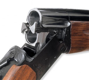 Ружейный выстрел